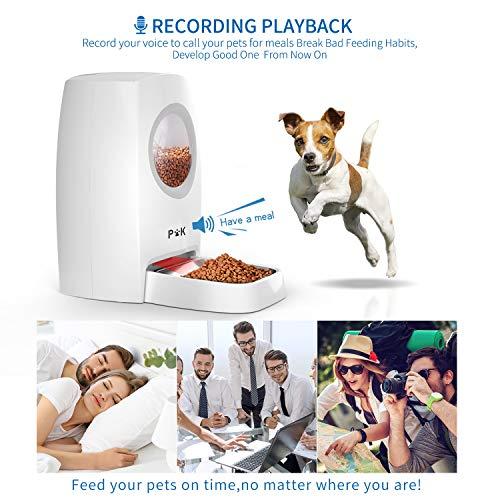 con ciotole in acciaio inox funzione di registrazione del suono per mangiare fino a 4 pasti al giorno PUPPY KITTY 6L Distributore automatico di cibo per gatti e cani