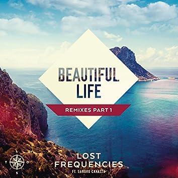 Beautiful Life (Remixes Part 1)