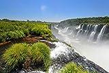N/ 1000 Pieces Jigsaw Puzzles Iguazu Falls, Argentina Adults Birthday Gift
