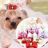 Cane gatto cucciolo fermagli per capelli, 10pezzi elegante carino Pet Puppy Grooming fiocchi fiocco con gomma Bandsand Pet accessori per capelli