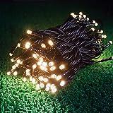 電光ホーム LED イルミネーション ストレート [ 8パターン 点灯 / 10m 100球 / ブラックケーブル ] 屋外 防水 防雨 ガーデン DIY (シャンパンゴールド)