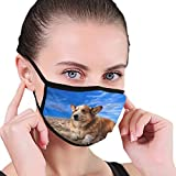 1528 Perros en la Playa Mascarilla Antipolvo Mascarilla Facial Boca Mascarilla antipolución para Hombre y Mujer