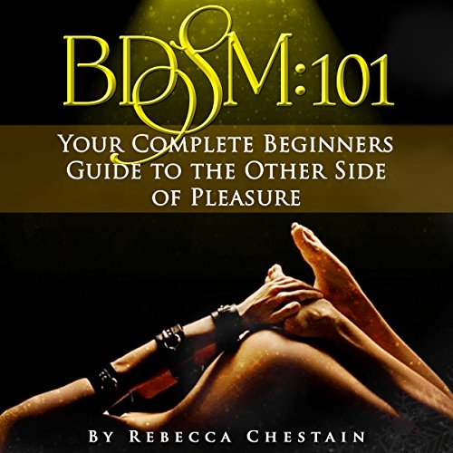 BDSM: 101 audiobook cover art