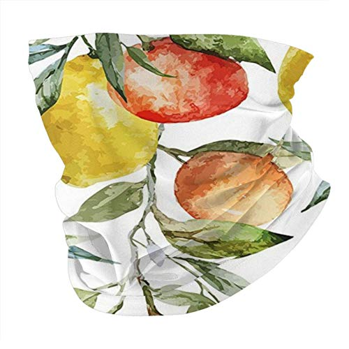 N/W Outdoor Scarf Neck Gaiter Face Bandana Scarf Head Scarf Nature Lemon And Orange Clementine Tree Branches Fruit Yummy Winter Vitamin Design Es Multicolor Head Scarf