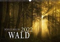 Mysterium Wald (Wandkalender 2022 DIN A3 quer): Der Wald im Wechsel der Jahreszeiten (Monatskalender, 14 Seiten )