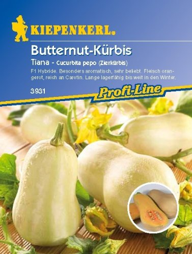 Butternut-Kürbis, 'Tiana'