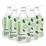 Marque Amazon - Solimo Savon liquide pour les mains - Citron vert et Menthe - Pack de 6 (300ml x 6)