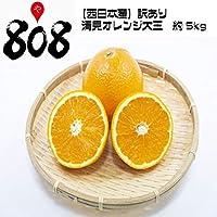 【西日本産】訳あり 清見オレンジ 大玉 約5kg