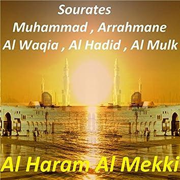Sourates Muhammad, Arrahmane, Al Waqia, Al Hadid, Al Mulk (Quran)
