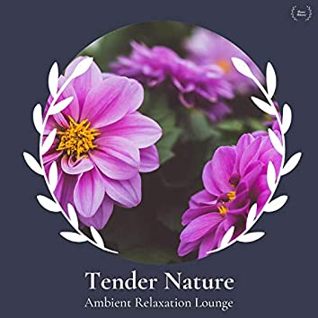 Tender Nature - Ambient Relaxation Lounge