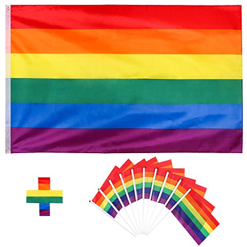 Whaline Regenbogen Flagge Set, LGBT Pride Fahne 150 x 90 cm, Rainbow Flag Gay Flag mit 10 pcs Kleine Flagge, Aufhängen Regenbogen Gay Stolz Parade Flagge für die Schwulenparade