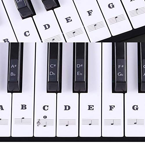 Buy Bargain Transparent Piano Keyboard Colorful Sticker Removable Electronic Keyboard 37/49/54/61/88...