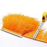 36 colores de calidad de plumas de avestruz flecos para manualidades y confección de vestidos (naranja, 2 metros)