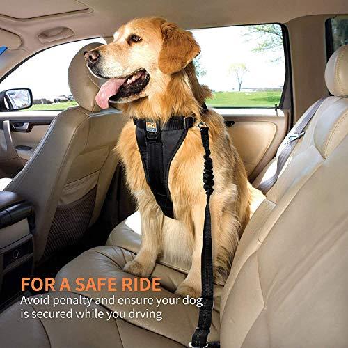 elloLife [2 Stück] Hunde Sicherheitsgurt, Einstellbar Hundesicherheitsgurt Sicherheitsgeschirr Hundegurt für Auto für alle Hunderassen Katzen& Autotypen, Schwarz