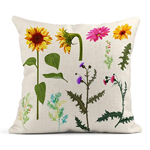 Xincow Set of 2 Throw Pillow Covers Halloween Sunflower of Autumn Flowers Gerbera Daisy Thistle Twigs Red Home Durable Decorative Linen Pillowcases Square Cushion Covers for Sofa 18x18 Inches