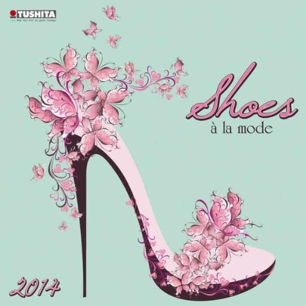ドル期待して危機Shoes De La Mode 2014 (Media Illustration)
