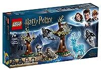 LEGOHarryPotter und der Gefangene von Askaban– Expecto Patronum (75945), Bauset