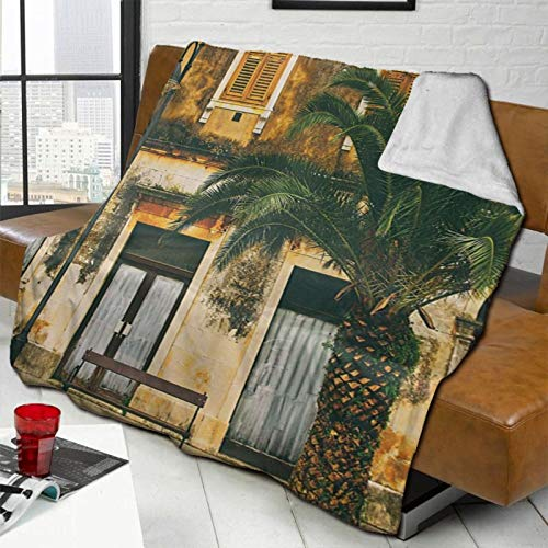 L-shop Farm House Decor Collection Old-Fashioned Mediterranean Colonial House Photo with Vintage Featured Shaded Colors Style Multi Personalized Fashion Lamb Blanket