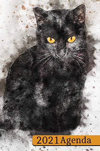 Agenda 2021: Diario settimanale 2021- 12 mesi da gennaio a dicembre – ottimo regalo per donna e uomo - Bel Gatto Nero Colorato Con Acquarello