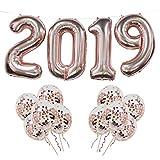 2019 Folienballons, 2019 Rose Gold Ballon Banner mit 10 Stück Rose Gold Konfetti Ballons, ideal für Abschlussfeier Party (Rose Gold 2019)