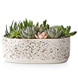LIFVER Succulent Pot, 9 Inch Large Succulent Planter with Drainage Holes, Oval Terrazzo Ceramic Flower Pot for Indoor, Cactus Flower Pot- Plants Not Included