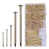 OMOTOOL Hardware Kit surtido de uñas (560 unidades), clavos chapados en latón para colgar fotos y...