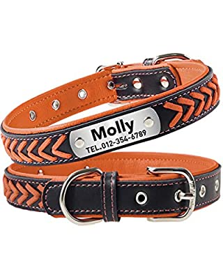 Taglory Personalized Dog Collar Leather,Stainless Steel Nameplate Engraved,Custom Western Collar for Extra Large Dogs,Orange