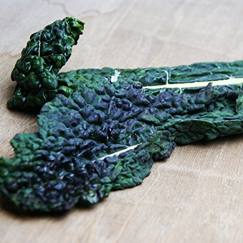 カーボロ・ネロ(黒キャベツ)約1Kg 毎週金曜日入荷 イタリアの野菜フレッシュ空輸便 10月〜4月