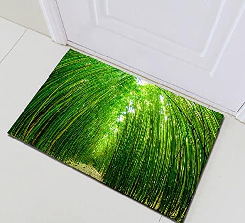 Camino del Bosque de bambú Verde Decoración del hogar Puerta Alfombra Delantera Alfombrilla de baño Antideslizante Fácil Limpieza 40*60cm Esencial para la Familia