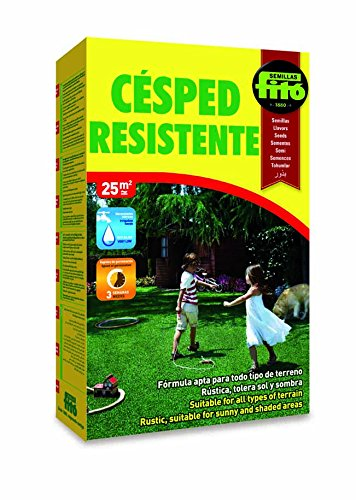 Semillas Fitó 447 - Césped Resistente