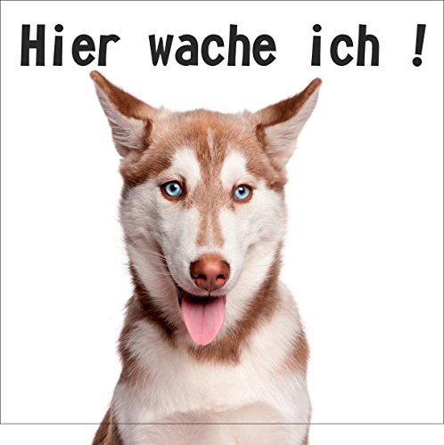 wodtke-reclametechniek hondenschild Hier waak ik Husky