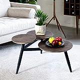 FurnitureR Pequeña Mesa de café Redonda Mid Century Vintage Marco de Acero Mesa Auxiliar Mesa Auxiliar para Sala de Estar Negro