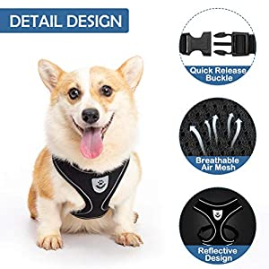 SCENEREAL Dog Harness with Leash Set for Small Dogs, Soft Mesh Puppy Harness and Retractable Dog Leash, No Pull Padded Vest with 16.4 FT Leash for Small Breeds Dogs & Cats