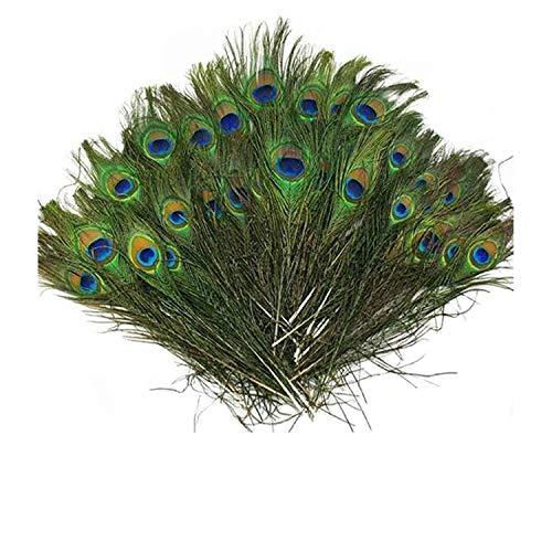 SKL 100 pcs Plumes de Paon Paon Plume avec des Yeux, pour Bricolage décoration de la Maison de Bijoux Faire Artisanat et Plus