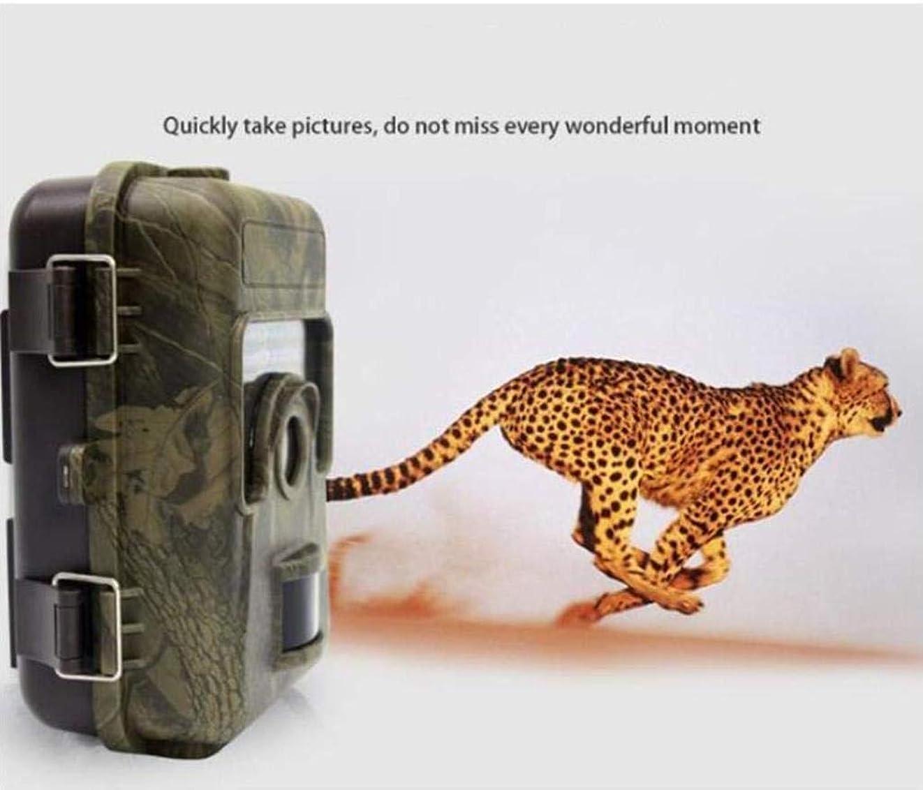 気を散らすスペア議論するHd狩猟野生動物カメラナイトビジョン赤外線12メートル1080 p野生防水ip66キャプチャカメラ用屋外屋外ホームセキュリティ監視