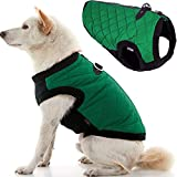 Gooby Fashion Dog Vest - Green, X-Large - Small Dog Sweater Bomber Dog Jacket Coat with D Ring Leash and Zipper Closure - Dog Clothes for Small Dogs Girl or Boy for Indoor and Outdoor Use