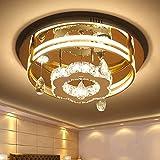 Wall Spotlights Luces de Techo de Cristal LED, Diseño Floral Moderno de 80 W Lámpara de Araña de Cristal Regulable Accesorio de Montaje Empotrado para Comedor, Dormitorio, Sala de Estar, Pasillo