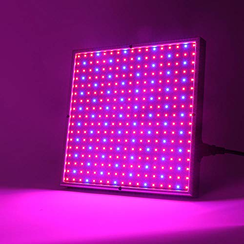 Plantenlicht groeilamp plantenlampen 20 W 30 W 120 W 200 W LED aanbouw licht compleet spectrum plant blauw fytolamp LED lamp voor planten aquarium bloemen hydrocultuur Veg