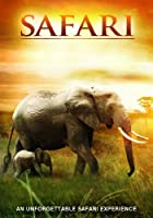 Safari [DVD] [Import anglais]