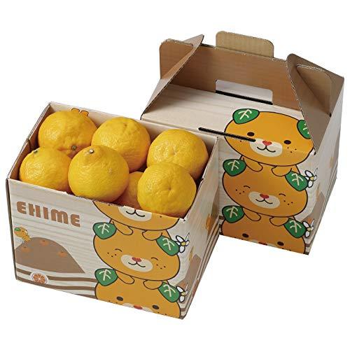 みかん はるか 風のいたずら 訳あり 大きさおまかせ 1.5kg 愛媛県 中島産 柑橘 ミカン バレンタイン ギフト 贈り物