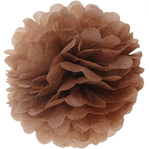 Lightingsky 10pcs DIY Decorative Tissue Paper Pom-poms Flowers Ball Perfect for Party Wedding Home Outdoor Decoration (10-inch Diameter, Coffer)