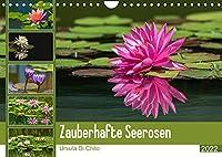 Zauberhafte Seerosen (Wandkalender 2022 DIN A4 quer): Seerosen in schillernden Farben (Monatskalender, 14 Seiten )
