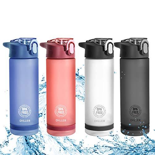 Diller Trinkflasche Sport Wasserflasche Flasche BPA Frei Gym 850ml 550ml Auslaufsicher De24 (850ml, Blau)