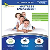 """Sleeper Sofa Queen Mattress Protector 60"""" Wx72 Lx5 D - Waterproof Zippered Encasement Premium Quality Bed Cover Protects Against Dust, Allergies"""