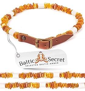 Baltic Secret Collier d'ambre pour Chien avec Inscription en céramique EM Pipes – Effet microorganismes – Collier en Ambre – Protection Anti-tiques