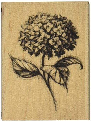 Inkadinkado Gummistempel für Karten und Scrapbooking, Hortensien, Blumen-Design, 5,8 x 7,6 cm (L x B) 1 Stück