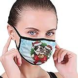 CZLXD Mascotas Guirnalda navideña con un Perro, Gato y hámster, máscara Antipolvo, máscara de Boca anticontaminación para Hombre y Mujer