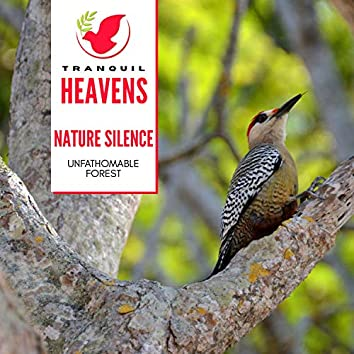 Nature Silence - Unfathomable Forest