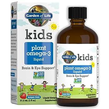Garden of Life Plant Omega-3 Ala Dha & Epa Supplement for Children -Liquid Strawberry - Vegan Brain & Eye Support for Kids Sugar Free & Non-GMO - 2 Fl Oz