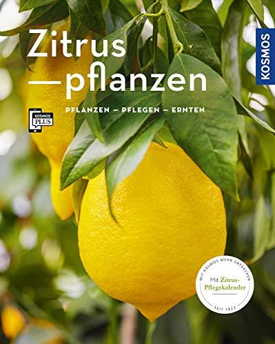 Zitruspflanzen: gestalten - pflanzen - ernten (Mein Garten)